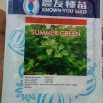 SELEDRI_SUMMER_GREEN___KNOW_YOU_SEED
