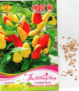 cabai_ornamental_pepper_cina
