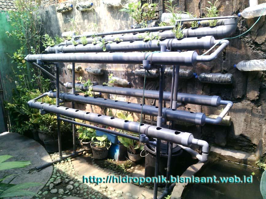 Proyek Pembuatan NFT hidroponik