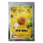 bunga matahari ipb