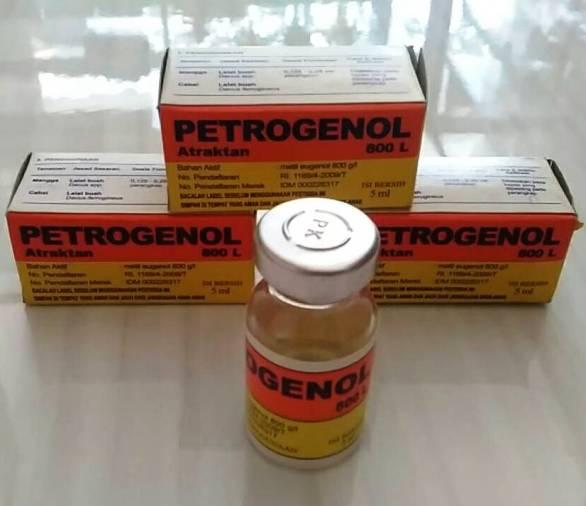 Petrogenol, perangkap lalat