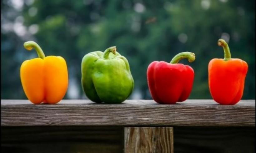 Aneka jenis Paprika