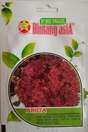 Selada merah Arista