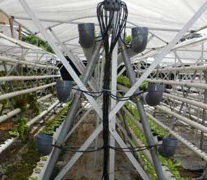 Fungsi manifold dalam hidroponik